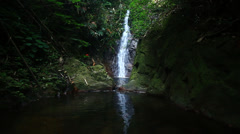 A pool and waterfalls in Rainforest Stock Footage