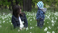 Stock Video Footage of Healthy lifestyle, mother and son laughing in nature, daffodils field 4K