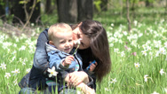 Stock Video Footage of Loving baby and mother laughing together in nature, daffodils gentle swaying 4K