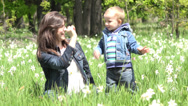 Stock Video Footage of Child learning to give high five to smiling mother in nature, daffodils lawn 4K