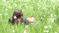 Stock Video Footage of Attractive mother and lovely baby boy lie down on daffodils field chatting 4K