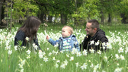 Stock Video Footage of Parents caressing little child in blossom park, healthy lifestyle