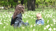 Stock Video Footage of Little child and mother in nature, daffodils flowers gentle swaying