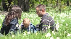 Happy family, sweet boy kissing parents, enjoy daffodil fragrance, lifestye Stock Footage