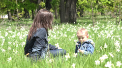 Beautiful mother caresses little child in nature, boy offer a daffodil flower Stock Footage
