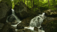 Stock Video Footage of cascades in forest