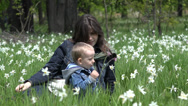 Stock Video Footage of Mother and son relaxing in nature, blossom daffodils field