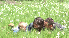 Perfect family, lovely child and young mother relax in nature, daffodils swaying Stock Footage