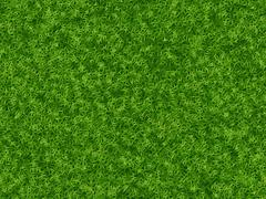 Lush green grass texture. wallpapers pattern Stock Illustration