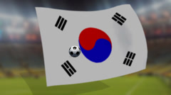 Soccer world cup 2014 - South Korea flag - background video Stock Footage