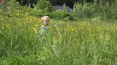 Joyful little child playing in green meadow with long plants, height grass Stock Footage