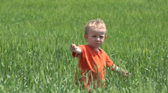 Cute little boy playing in green grain touching the wheat 4K Stock Footage