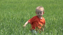 Little boy walking in green wheat and play with sprinkler toy, agriculture - stock footage