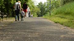 People walking on park 1080p - stock footage
