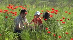 Cute little boy and parent spend time together in blossom poppy field, lifestyle - stock footage