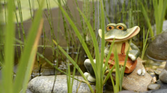 Toy frog in n the garden lake on rainy day 1080p - stock footage