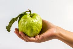 guava (tropical fruit) in hand on white background - stock photo