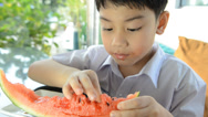 Stock Video Footage of Little asian cute boy eats ripe watermelon  .