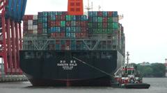 Hamburg Waltershof Container Terminal Stock Footage