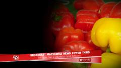 Marketing Lower Third - stock after effects