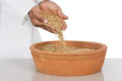 human hand pouring wheat in a clay pot - stock photo