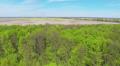 Slow flight over  green wood .Aerial HD Footage