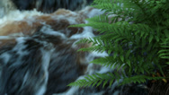 Stock Video Footage of Small Waterfall