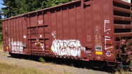 Stock Video Footage of Graffiti Train Cars - Pan Left To Right