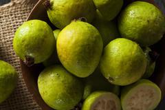 Fresh organic green guava Stock Photos