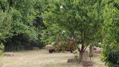Haymaker behind tree Stock Footage
