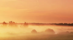 Moving fog at dawn Stock Footage