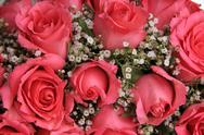 Stock Photo of pink roses in a bridal arrangement