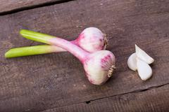 Stock Photo of garlic