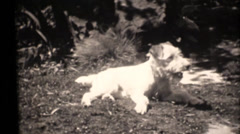 vintage 16mm, 1931 family movies, scooter - stock footage