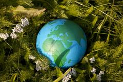 Earth and green grass Kuvituskuvat