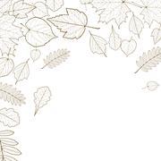 Autumn leaf skeletons template. Stock Illustration