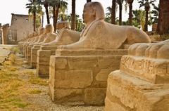 avenue of sphinxes - stock photo