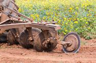 Stock Photo of tractor in flower garden