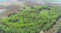air panorama of  wood and lake  from big height. Aerial view HD Footage