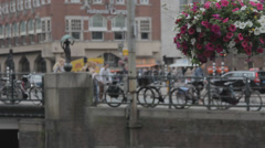 Flowerbeds in the streets of Amsterdam Stock Footage
