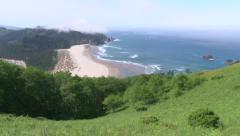 Lush Oregon Coastline - stock footage