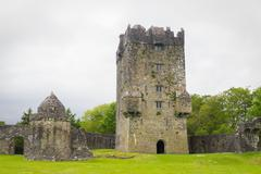 Stock Photo of Castle Tower and Courtyard