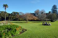 Stock Photo of albert park in auckland new zealand.