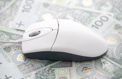 Computer mouse on polish money - stock photo