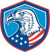 American bald eagle head shield retro Stock Illustration