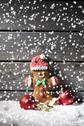 Stock Photo of Gingerbread man and Christmas bubbles  with rippling artificial snow in front
