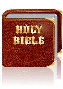 holy bible - stock illustration