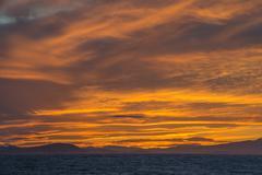 France, Provence Alpes Cote d'Azur, Var, Giens peninsula, sunset - stock photo