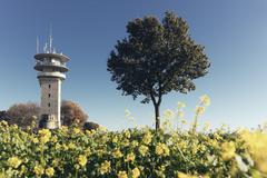Germany, North Rhine-Westphalia, Longinus Tower behind rape field Stock Photos