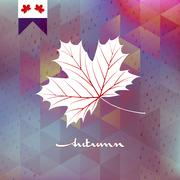 Autumnal maple leaf. EPS 10 Stock Illustration